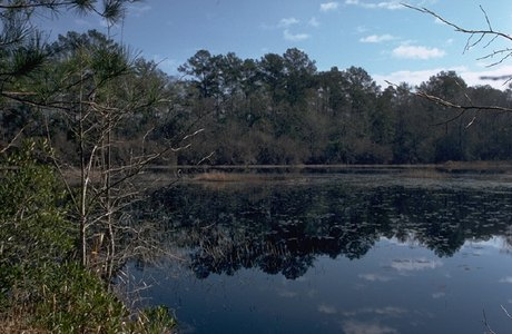 Big Thicket National Park